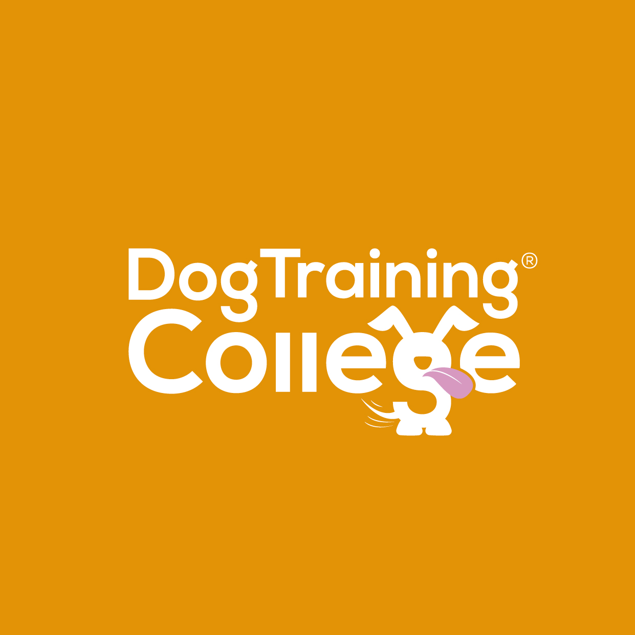Dog Training College Brand Guidelines 2019-05.jpg