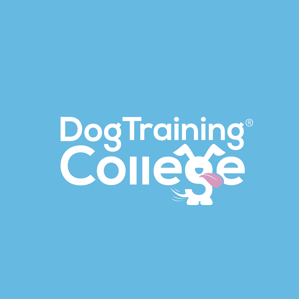 Dog Training College Brand Guidelines 2019-01.jpg