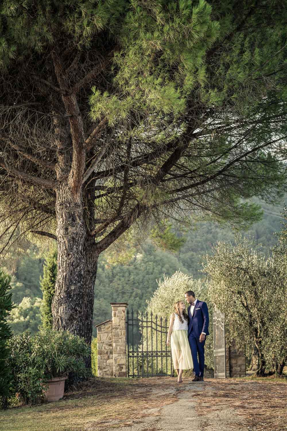wedding photo of a bride and groom under a tree in Tuscany.