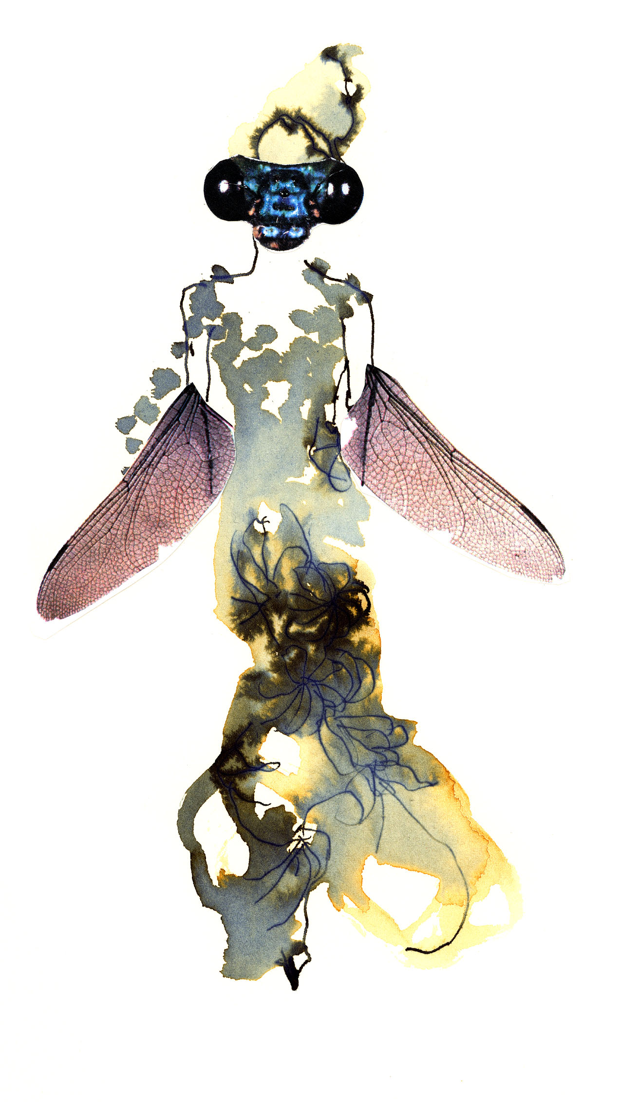 insektsmode2.jpg
