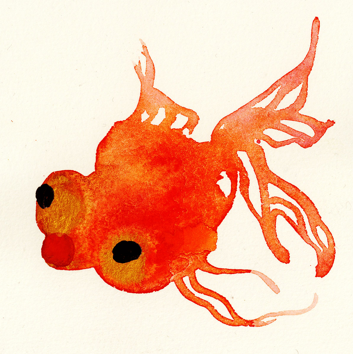goldfish8.jpg
