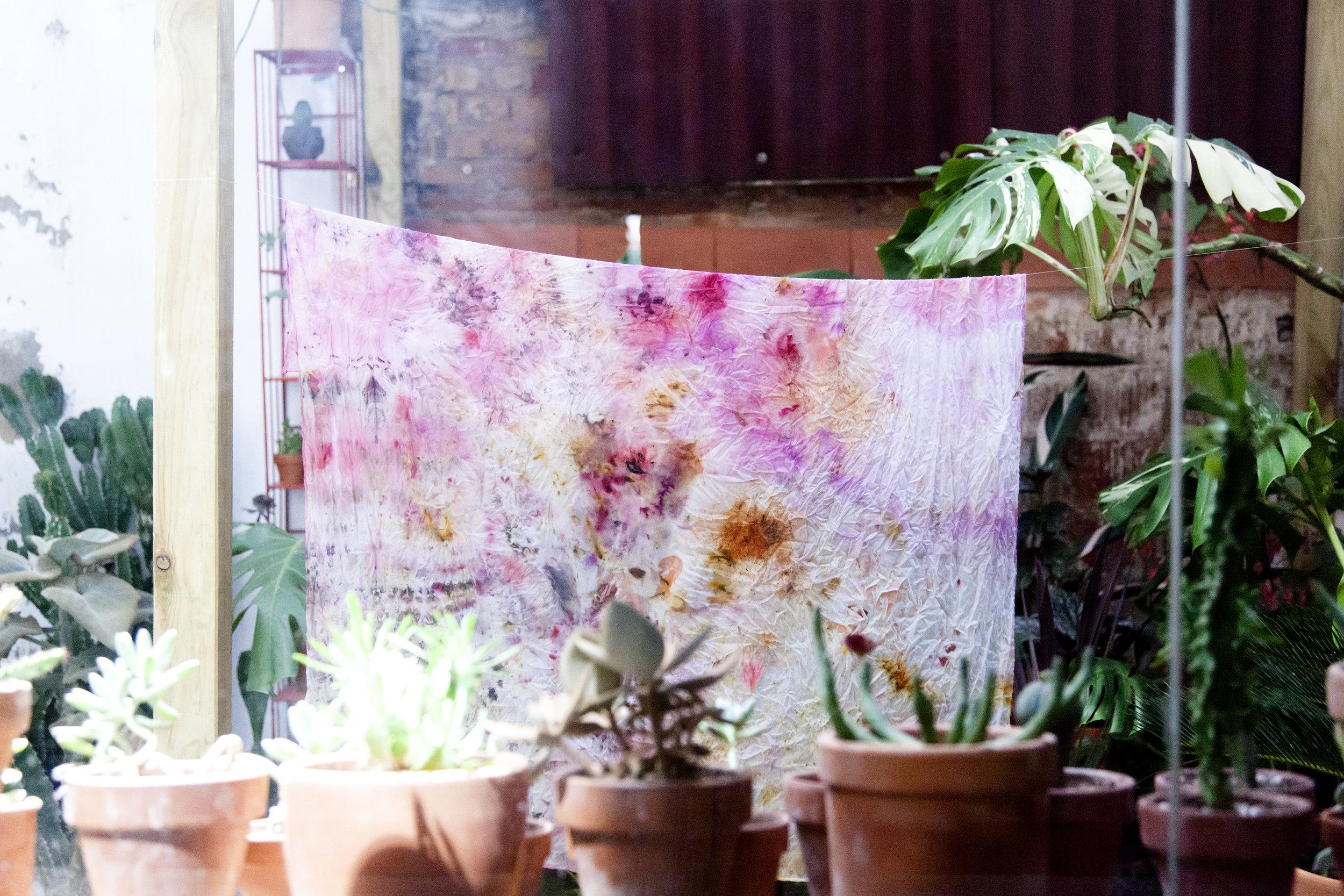 Plant_Print_Marble_Matter_Casa_Protea_HRES_044.jpg