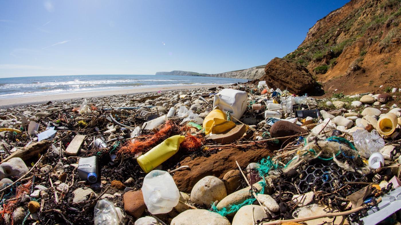 what-causes-ocean-pollution_8626fe75f49962e.jpg
