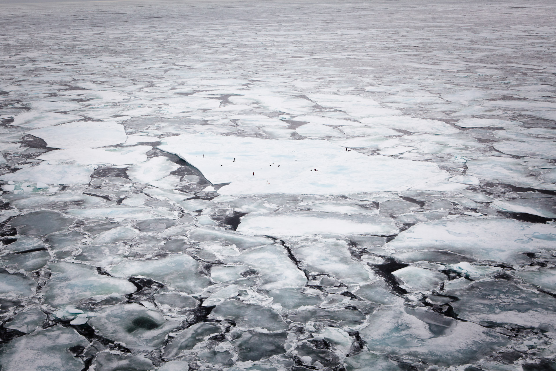 scientists working on a sea ice floe in the arctic ocean photographed from the air