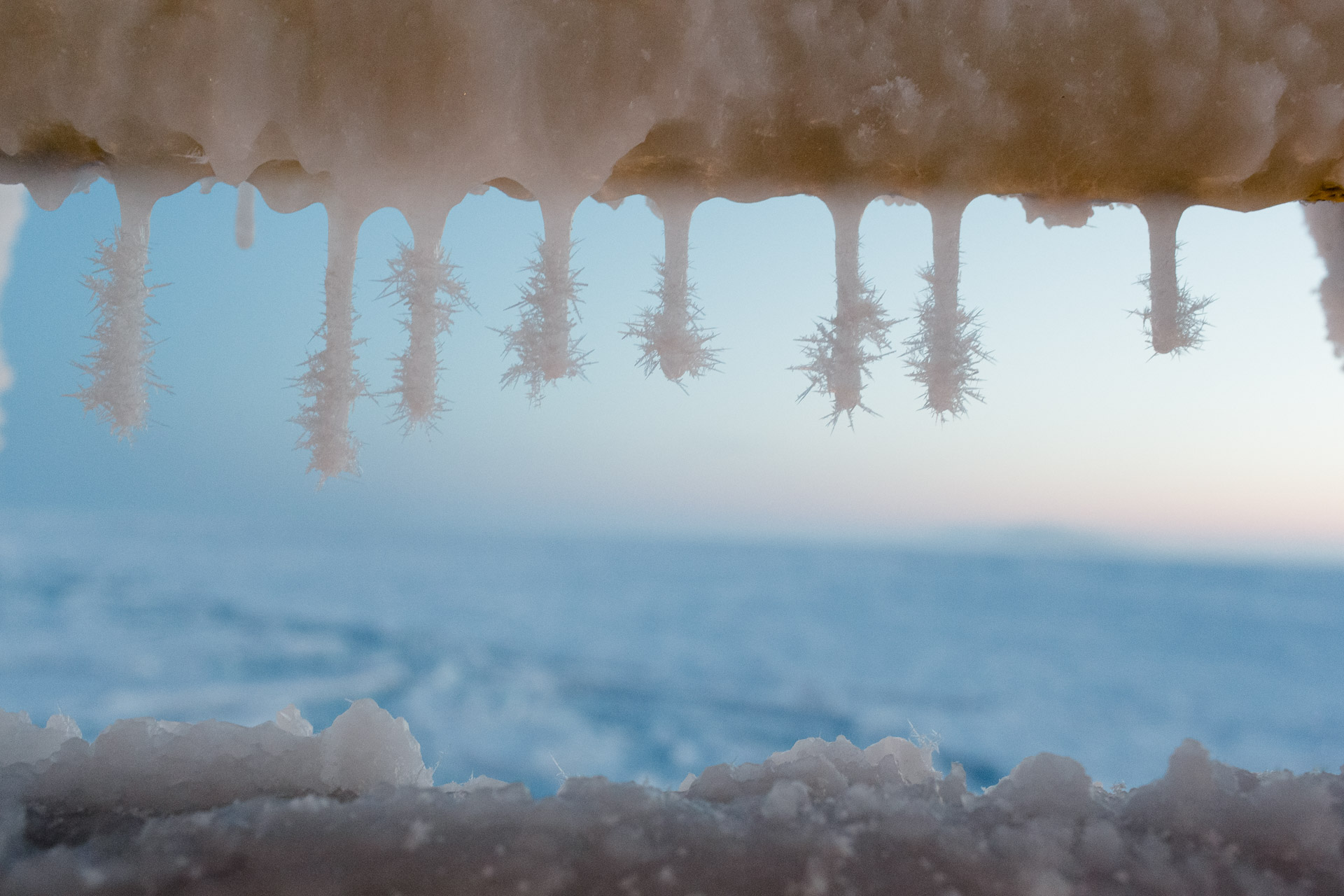 Detail of complex frost crystals growing downwards