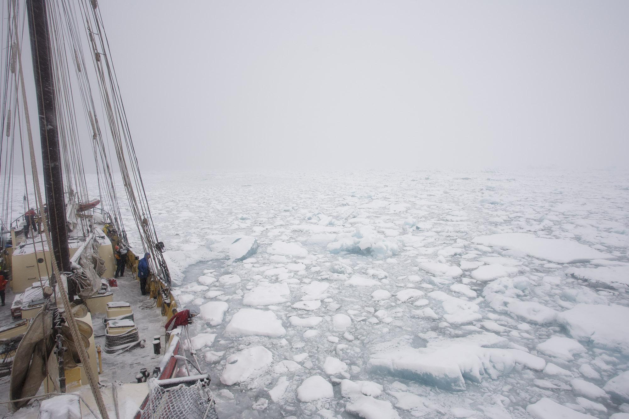 Noorderlicht in sea ice