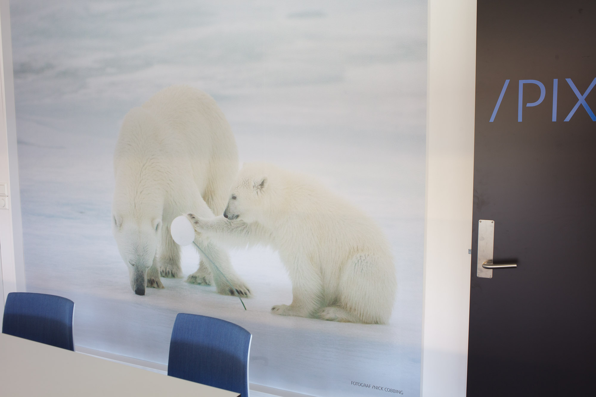 A photograph by Nick Cobbing of two polar bears in Canon Oslo corporate HQ