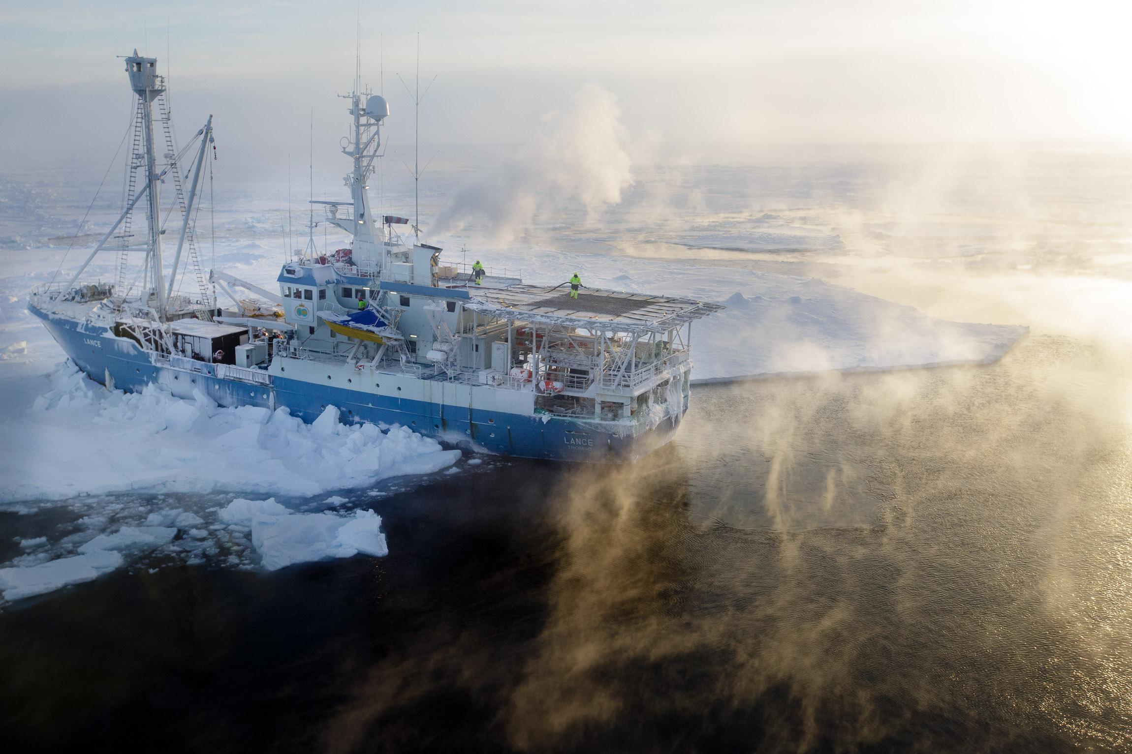 Lance stuck in sea ice