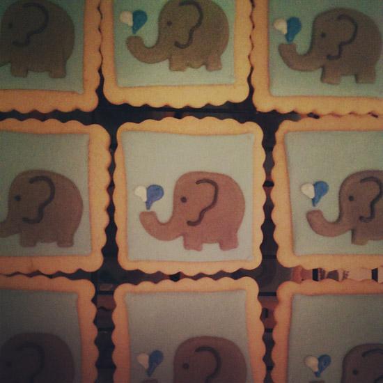 elephant_square_cookies.jpg