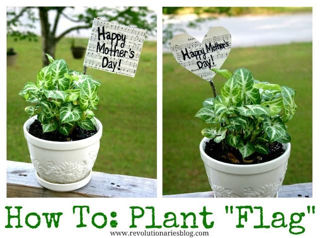 Plant-flag-double.jpg
