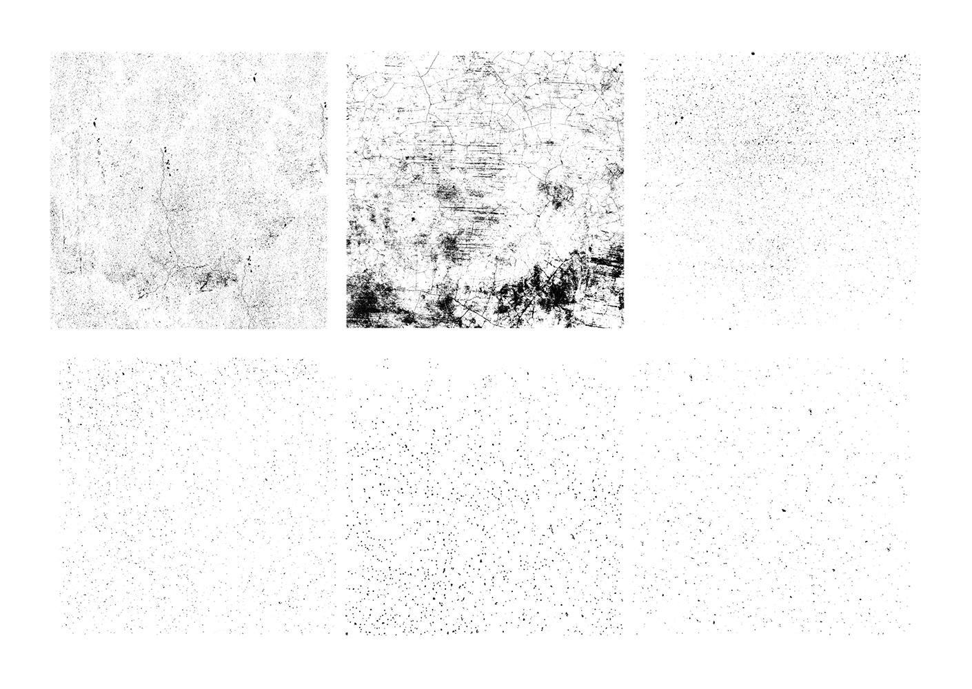 image asset 2