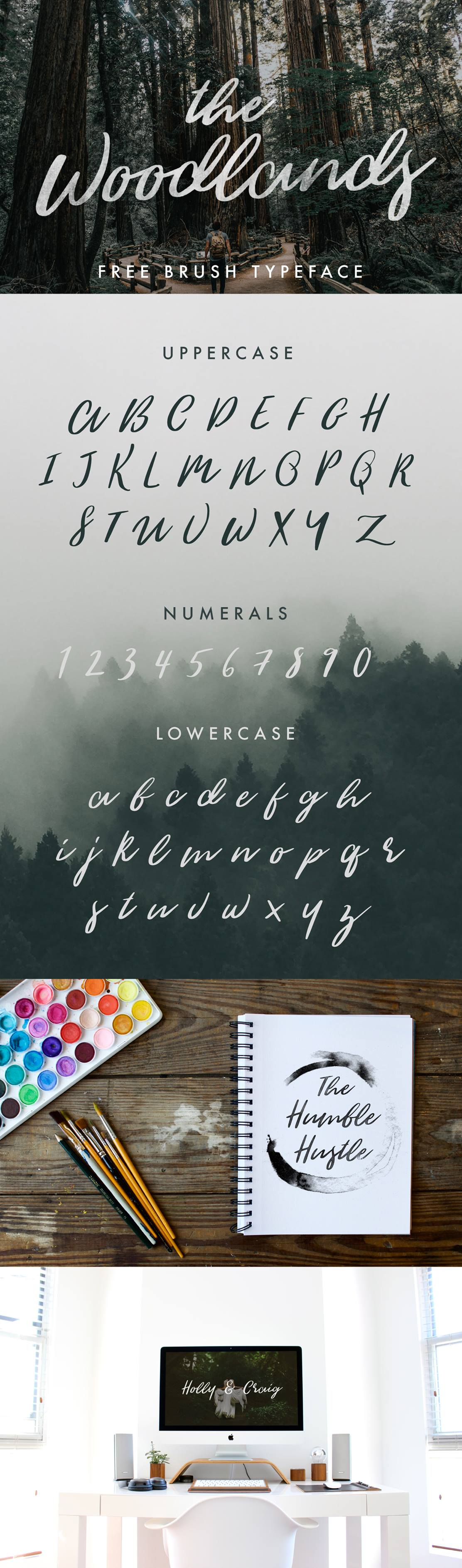 The-Woodlands-Free-Modern-Calligraphy-Font