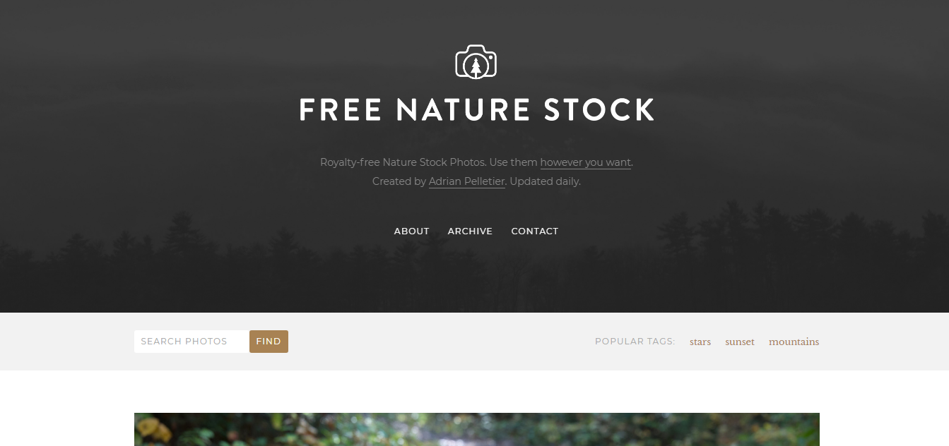 free nature stock.PNG