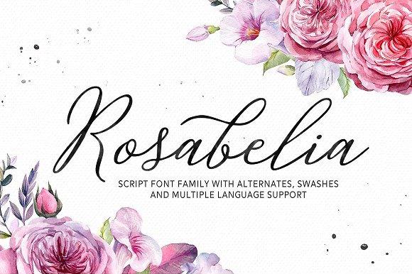 Solid Rosabelia.jpg