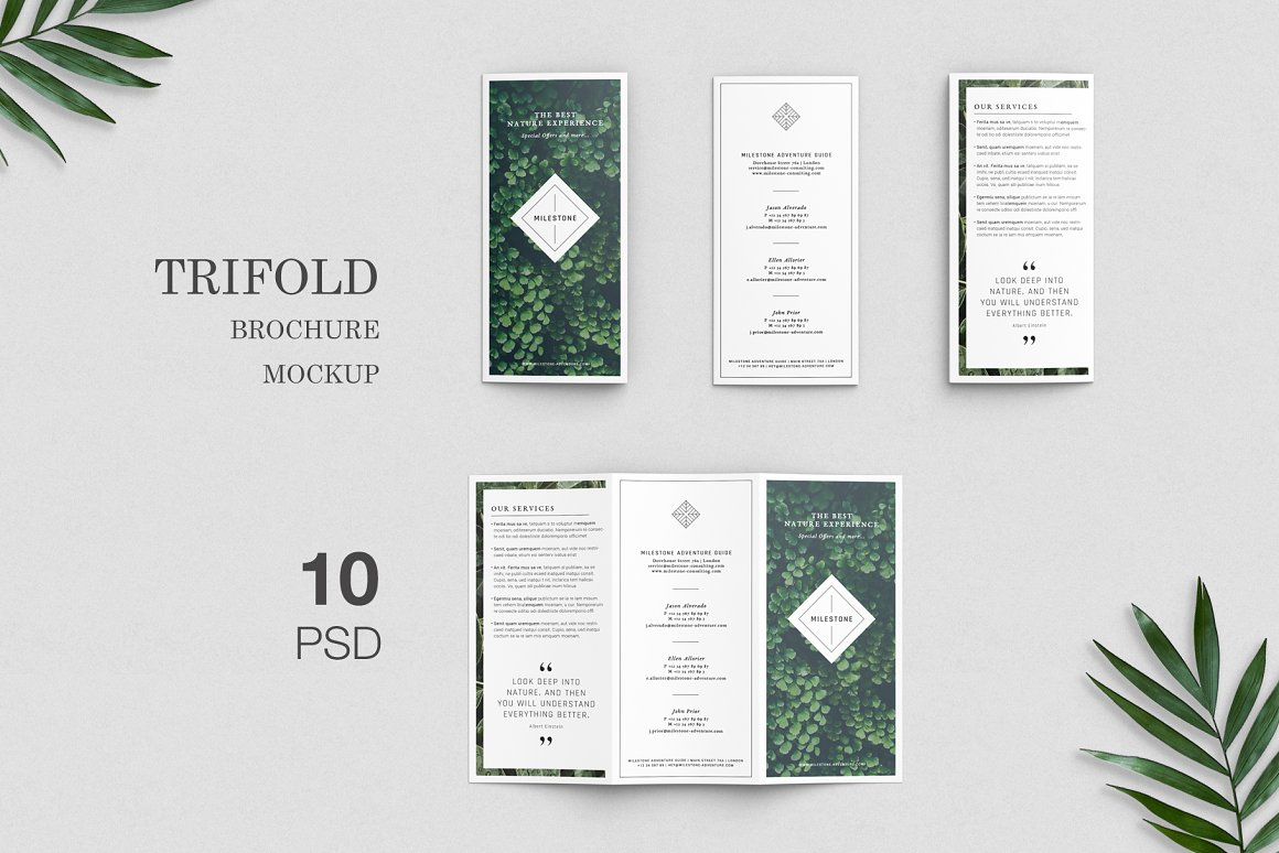 trifold_brochure_mockup_1-.jpg