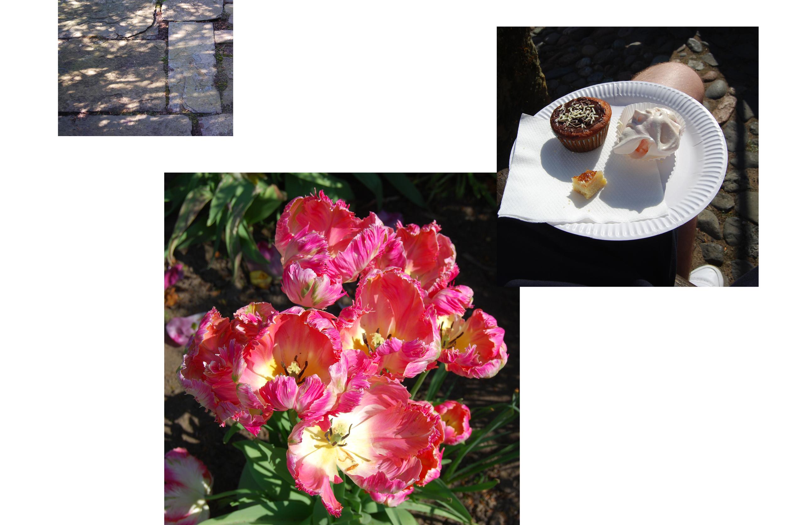 tulip collage.jpg