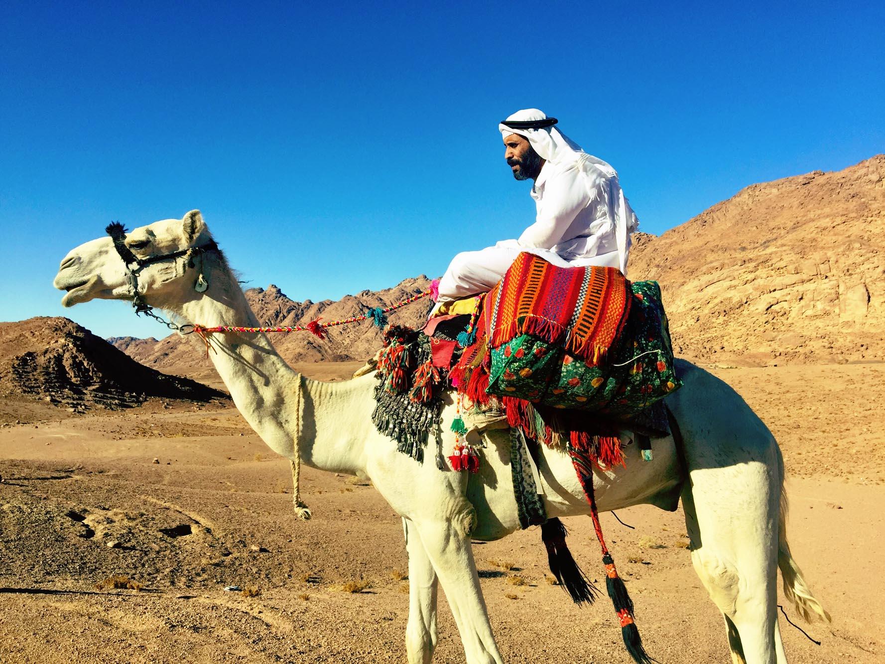 Mohamed on his camel in St Katherine