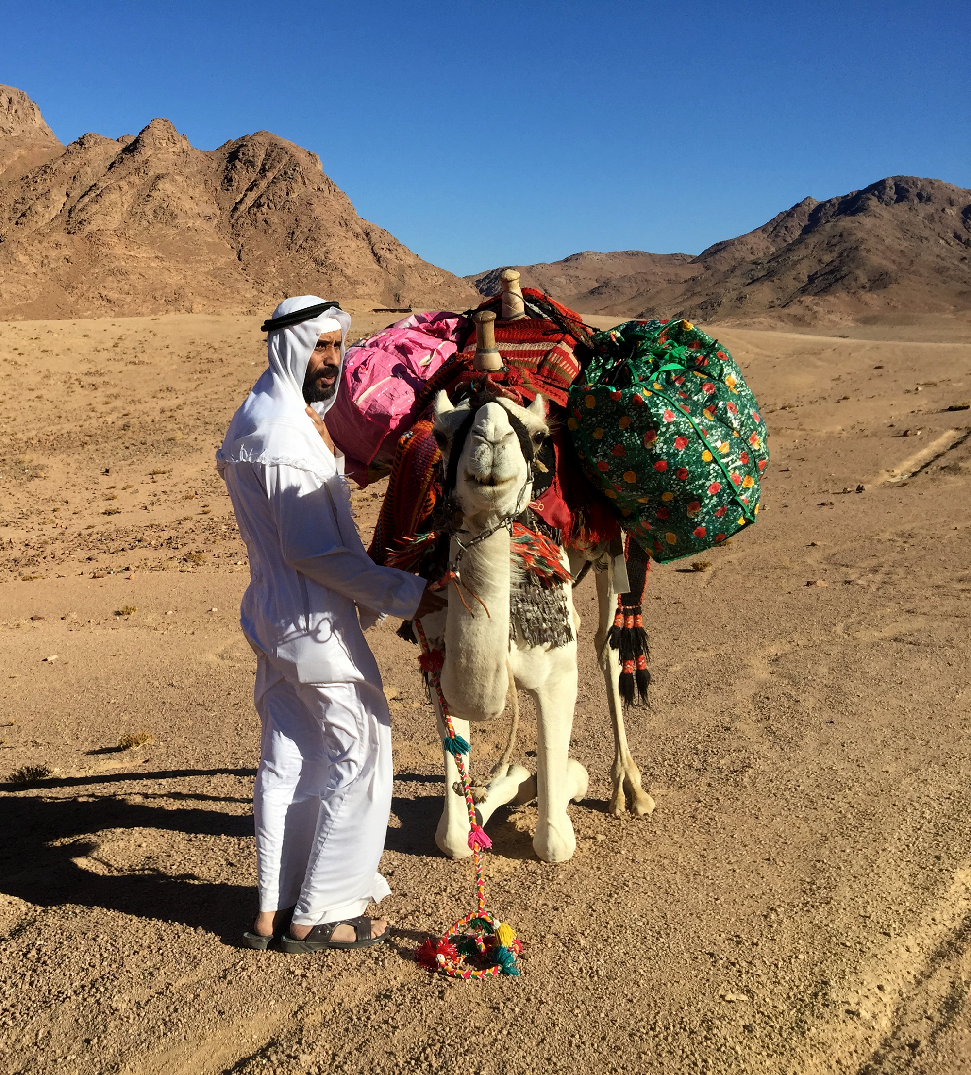 Mohamed collecting Bedouin craft on his camel