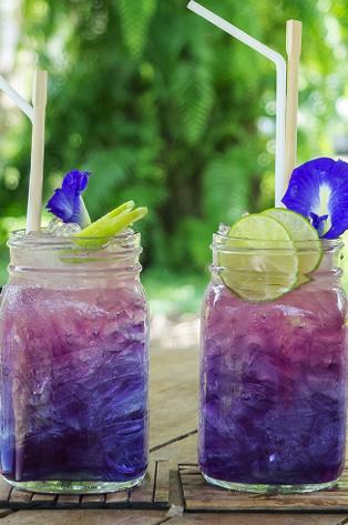 Grape Cooler.png