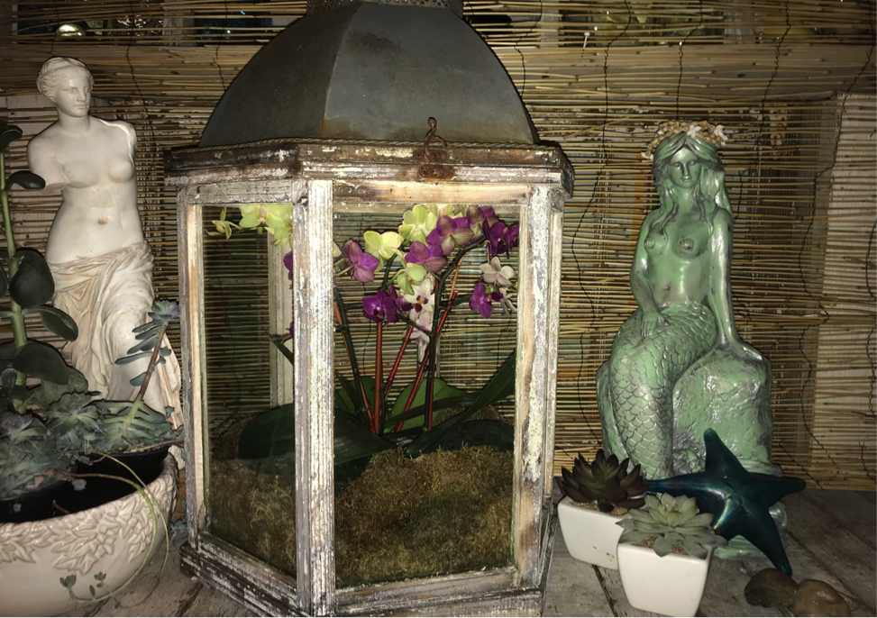 lantern-planter.png