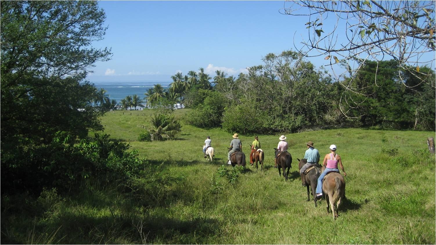 Best Guided Horse Tour in Costa Rica
