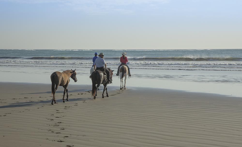 Amazing Beach Ride