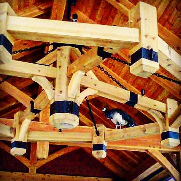 Timber Fr chandalier.jpg