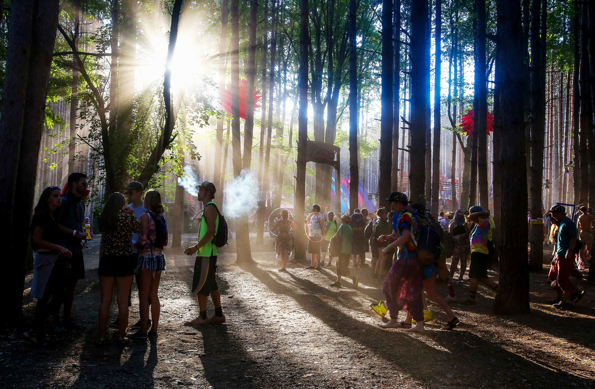 Sherwood Forest is seen at sunset during Electric Forest on Friday, June 26, 2015.