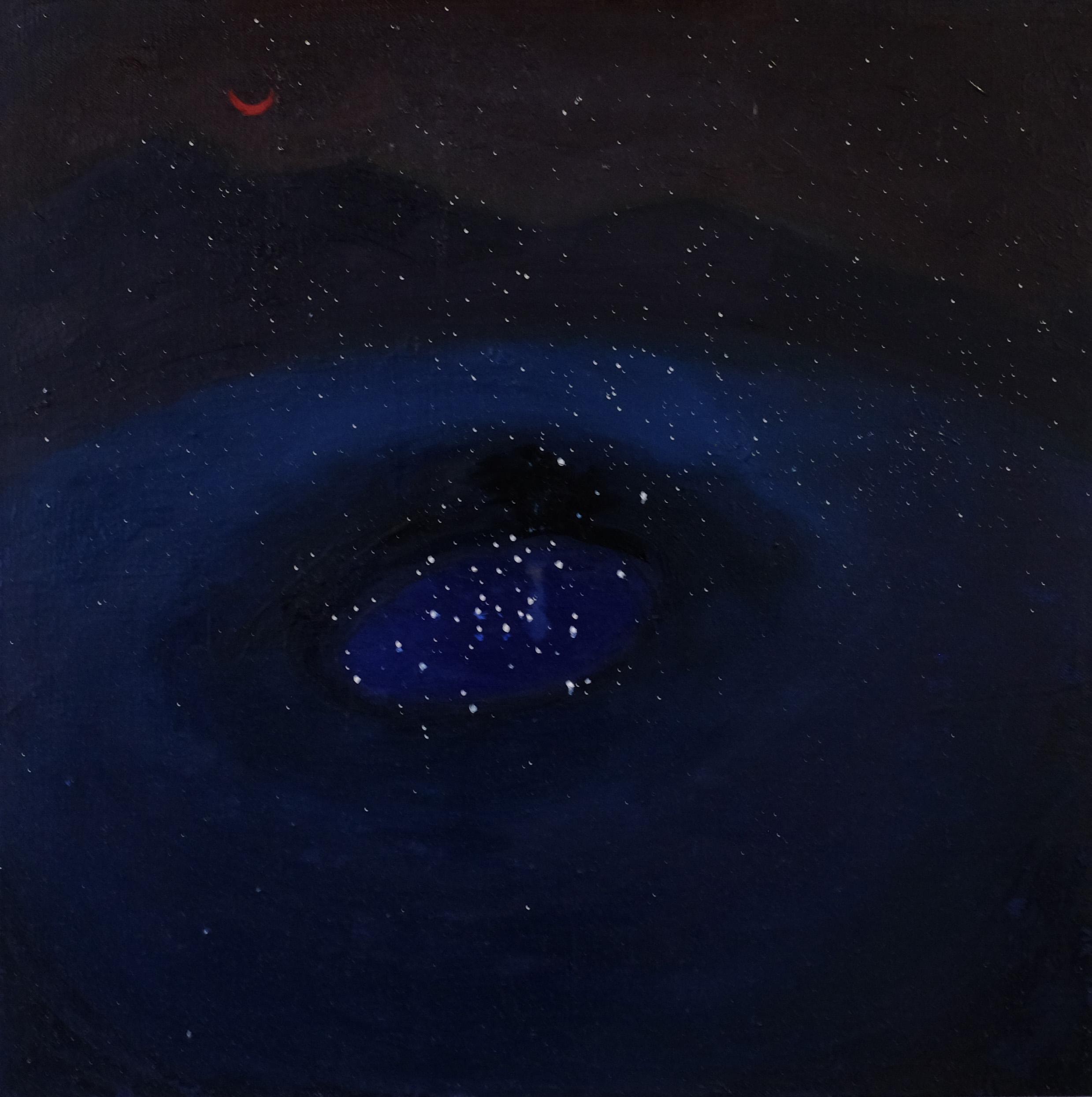 60 x 60 cm  oil on canvas