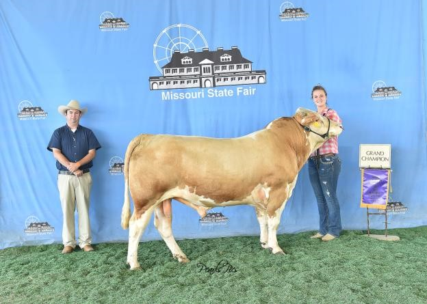 2016 Missouri State Fair Grand Champion Bull