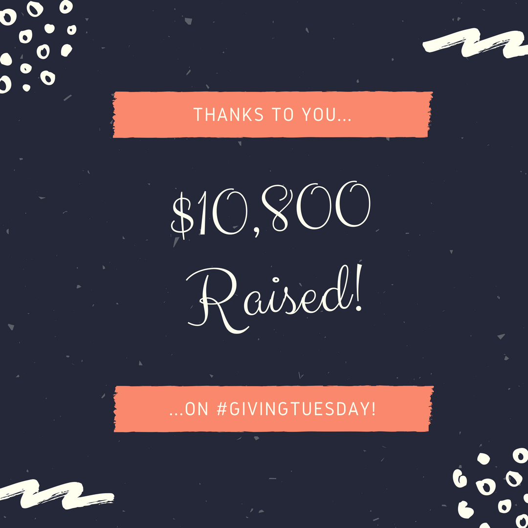 #GIVINGTUESDAY Final Total.png