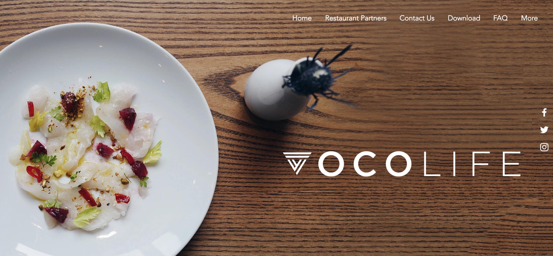 vocolife-rewards-startup