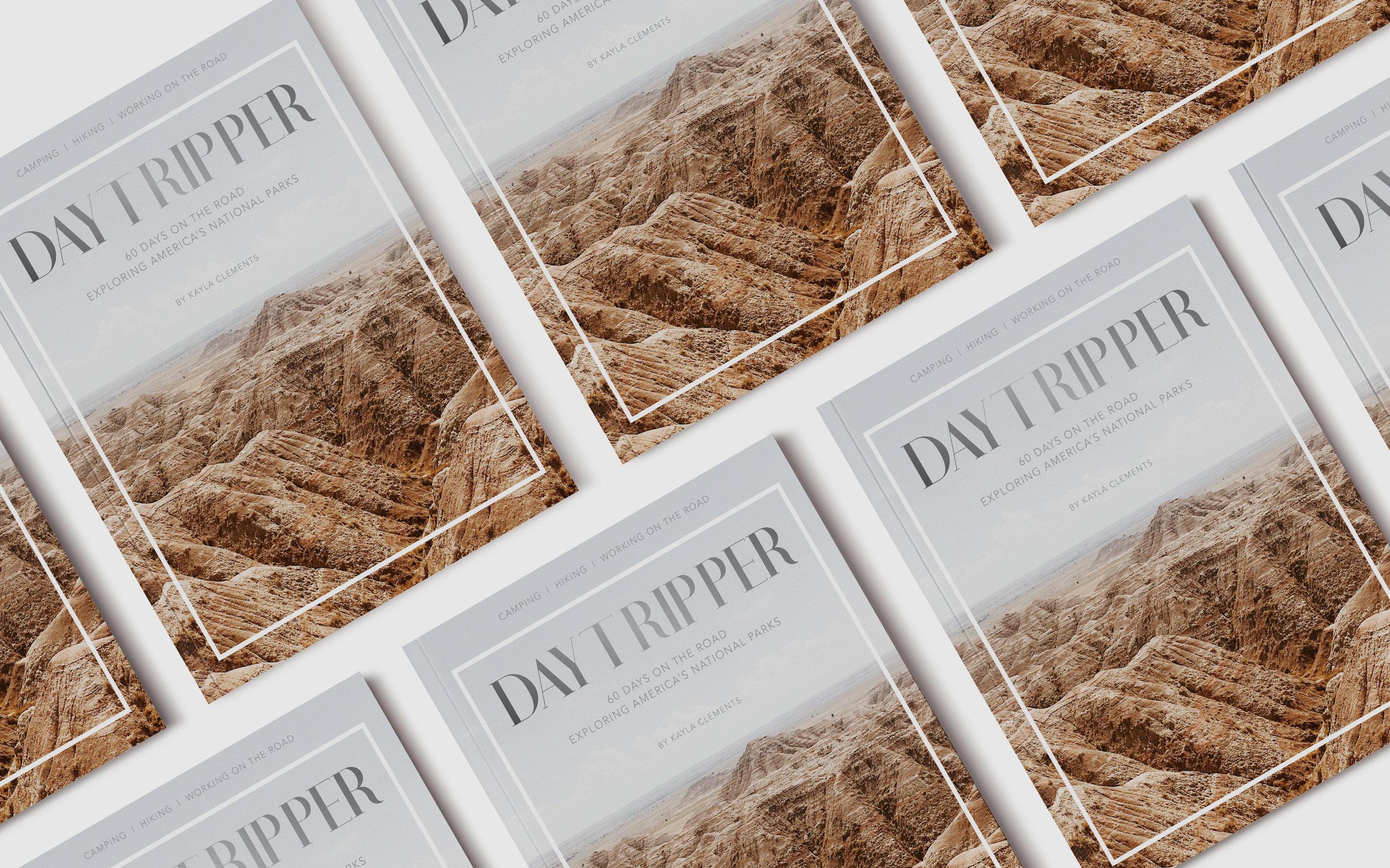 Daytripper-book.jpg