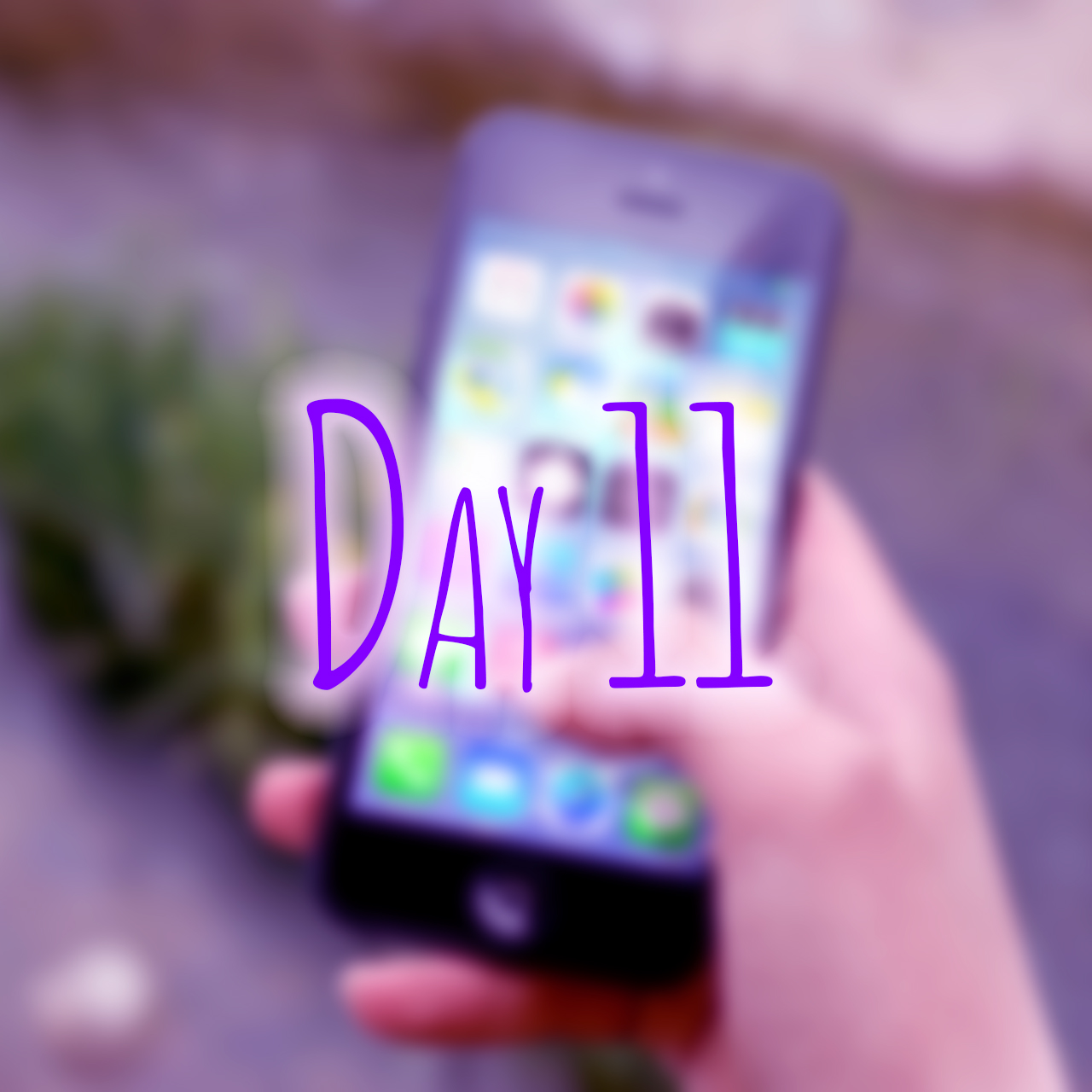 day11b.jpg