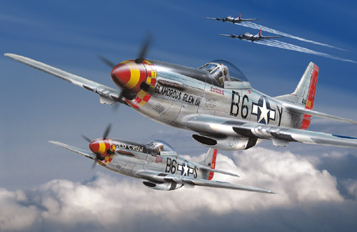 North American P-51's