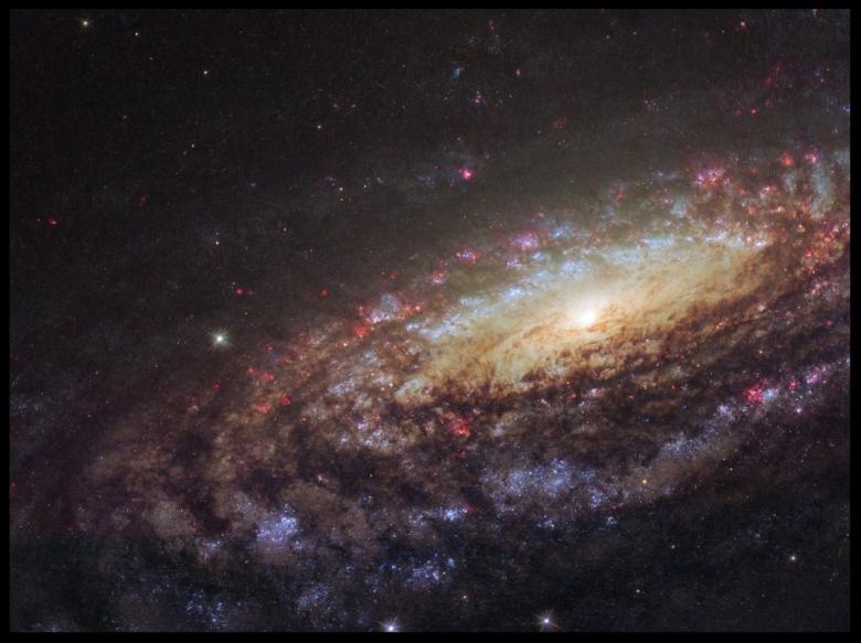 Amazing-Hubble-Image-of-Spiral-Galaxy-NGC-7331.jpg