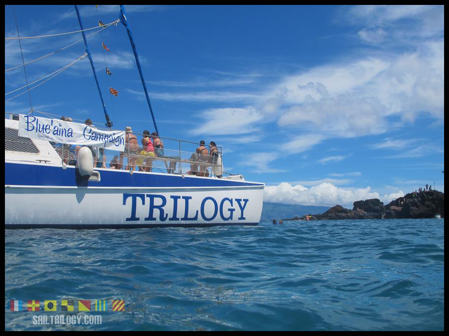 Trilogy cleaning the reef at Black Rock