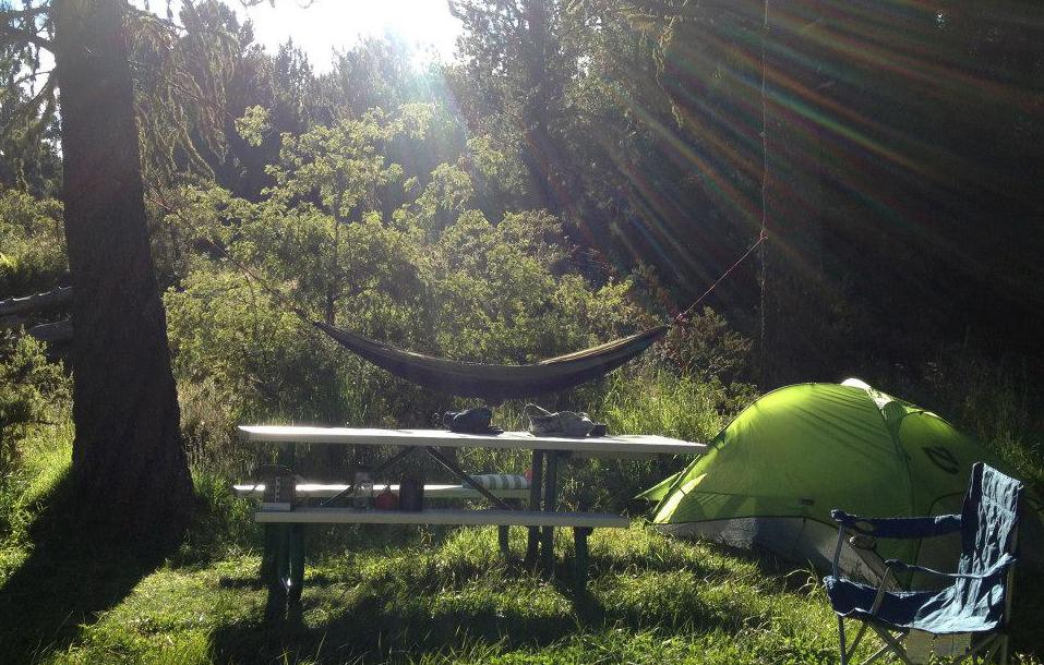 Camping at Hosmer's Grove