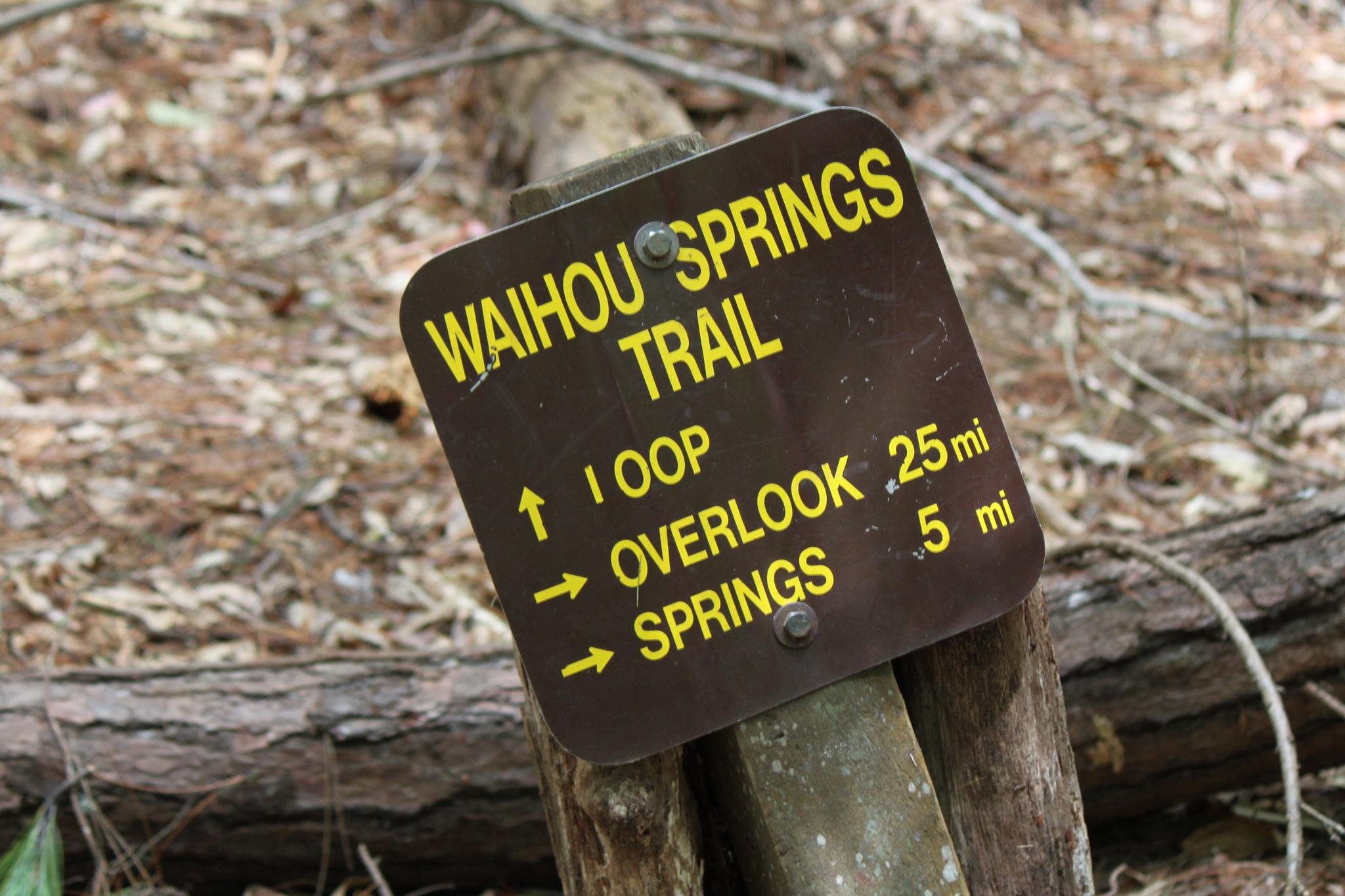 Waihou Springs
