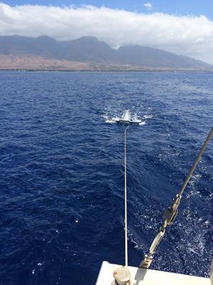 Manta Trawl RS