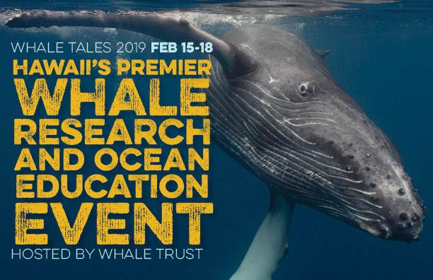 Whale-Tales-2019-Graphic.jpg