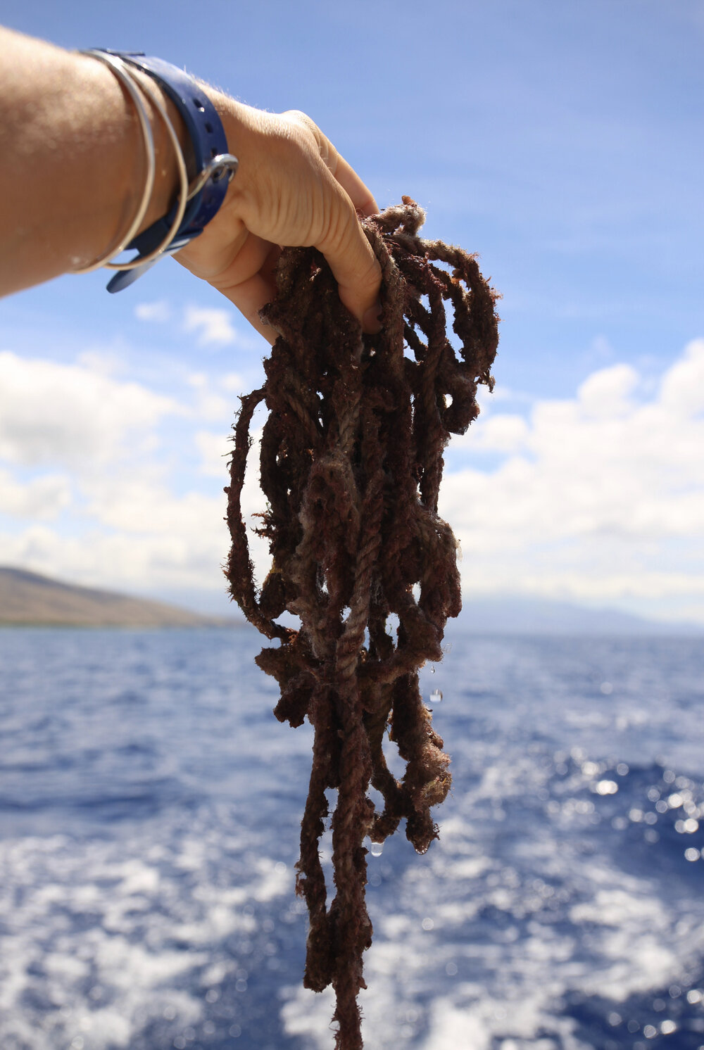 Rope found during the day's cleanup.