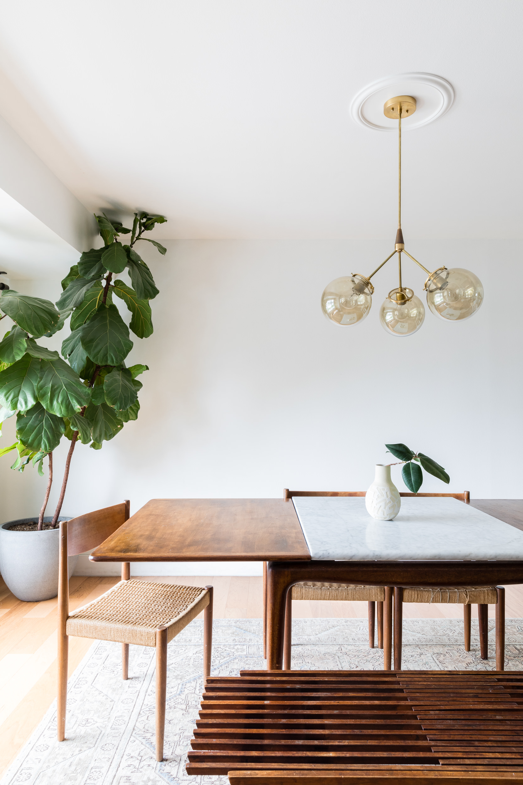Mid mod dining room with teak table and chairs and fiddle leaf fig tree.