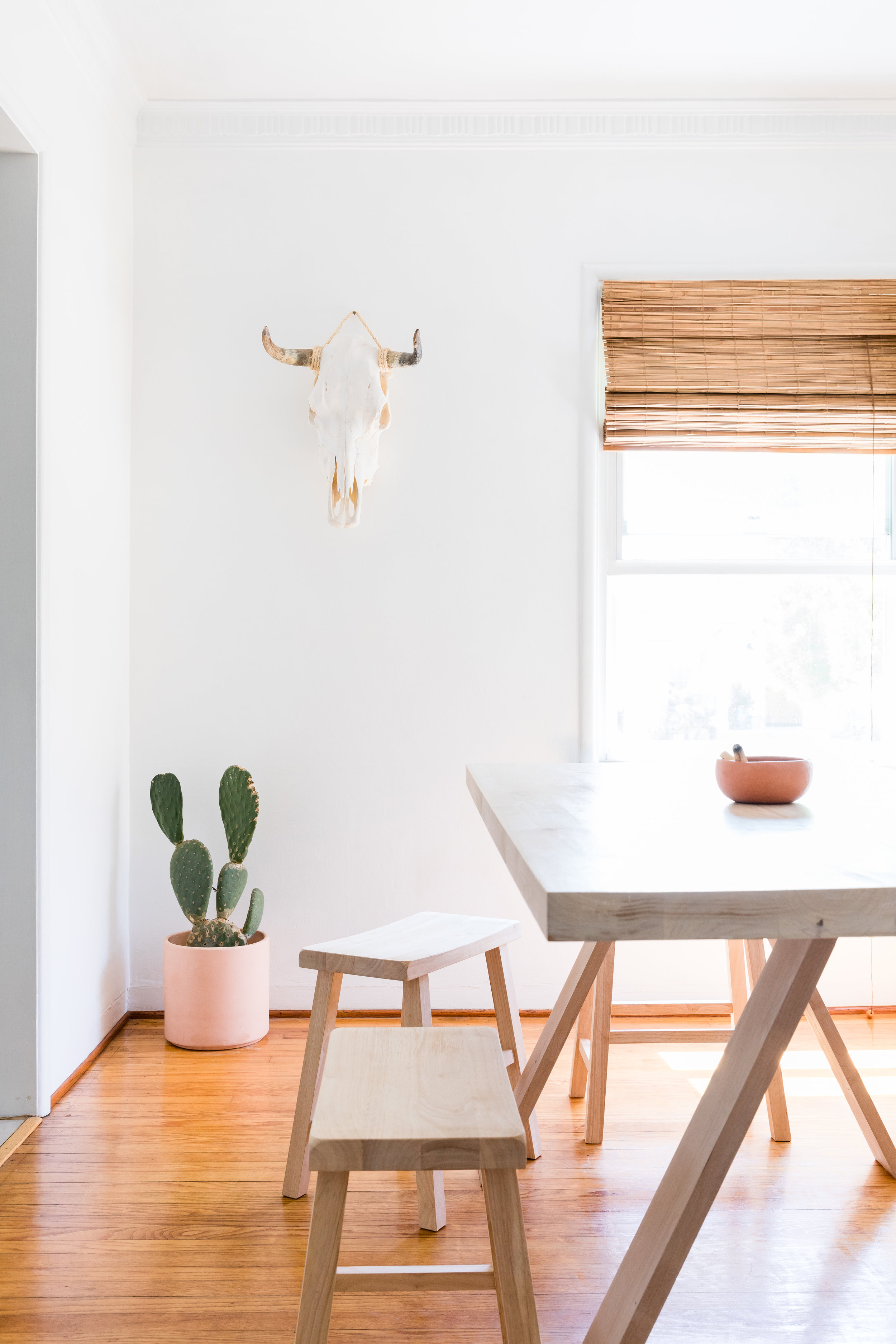 Venice Beach minimalist Airbnb with Bison skull and horns on wall, potted cactus, and Scandinavian kitchen table and benches.