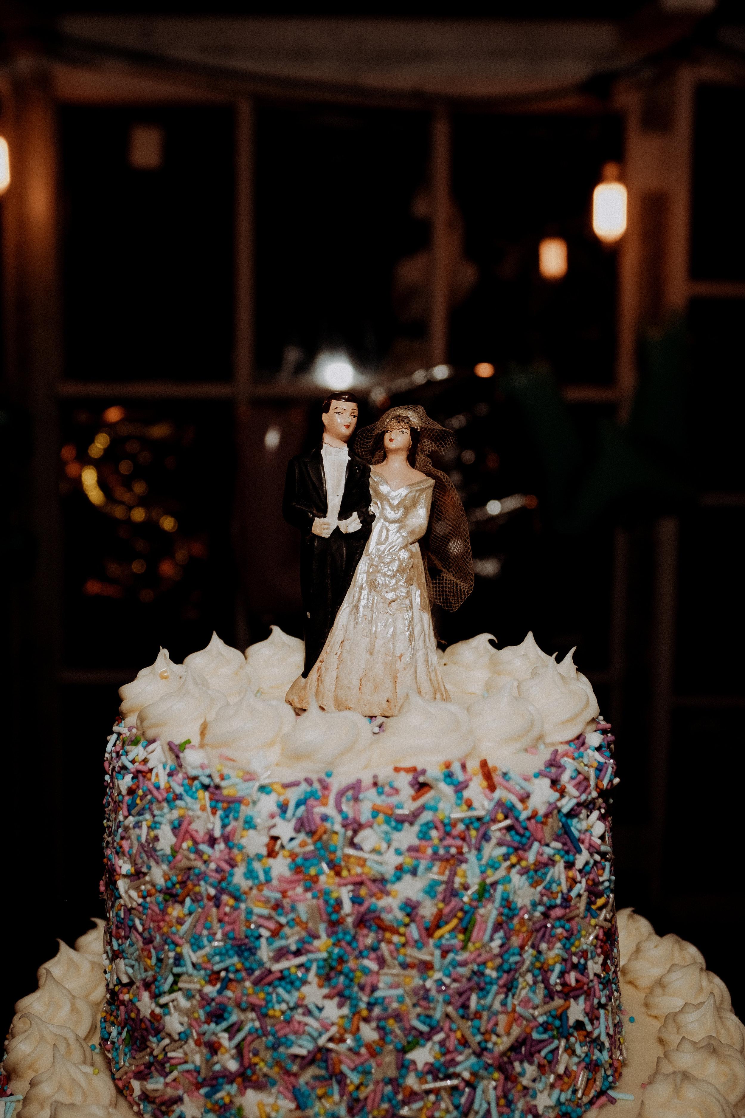 Chellise_Michael_Photography_Robertas_Brooklyn_Wedding_Photographer-712.jpg