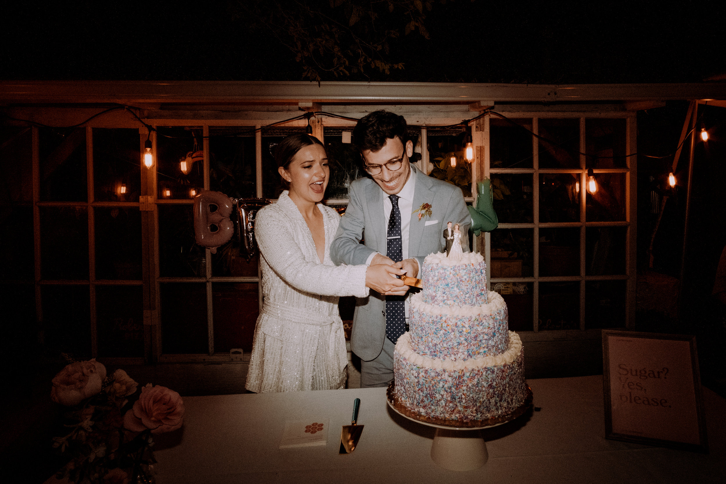 Chellise_Michael_Photography_Robertas_Brooklyn_Wedding_Photographer-824.jpg