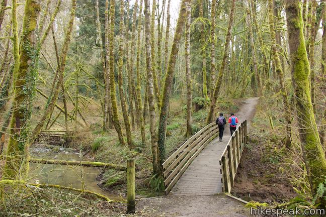 Red_Fox_Trail_Tryon_Creek_State_Natural_Area_hike_0529.jpg