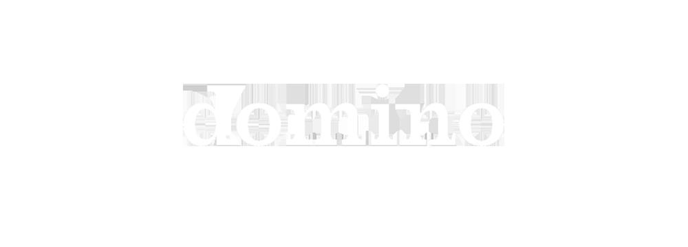 DOMINO logo  .png
