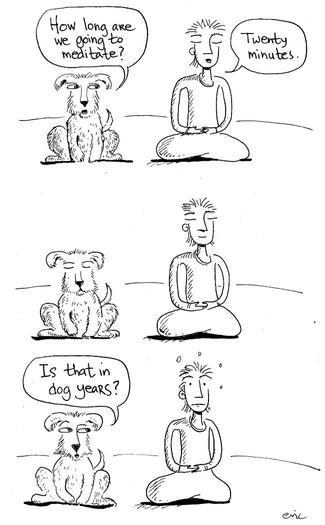 Cartoon 21.jpg
