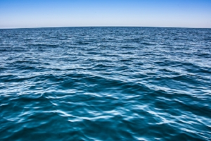 I'm on day 16 of my 21-day Bliss More meditation challenge and this image represents something I've released, which is my fear of open water swimming. I used to be petrified of swimming in the ocean, and now I'm not at all. #blissmore #blissmorechallenge